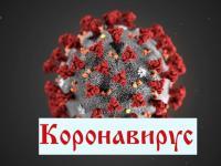 Памятка по предупреждению инфекционного заболевания (коронавирус)